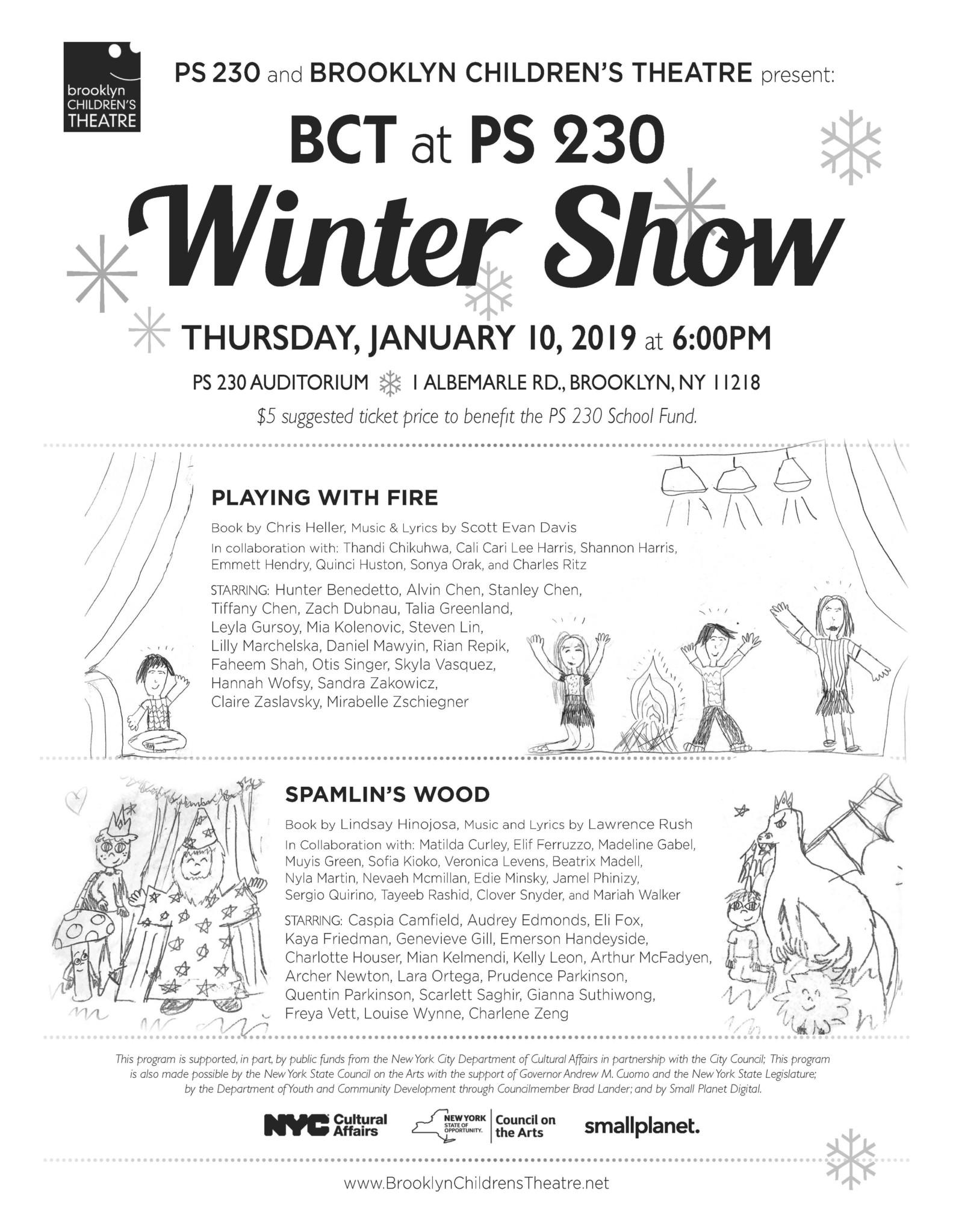 Brooklyn Children's Theatre | PS 230 Winter Shows
